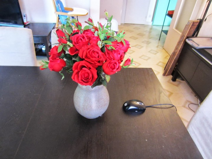 fausses-roses-rouges